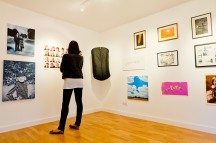 Educated Art, installation view