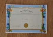 Their curating certificate